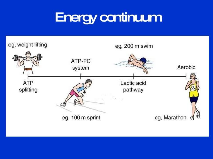 aerobic-system-29-728